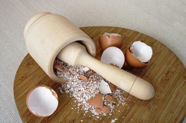 яичная скорлупа.
